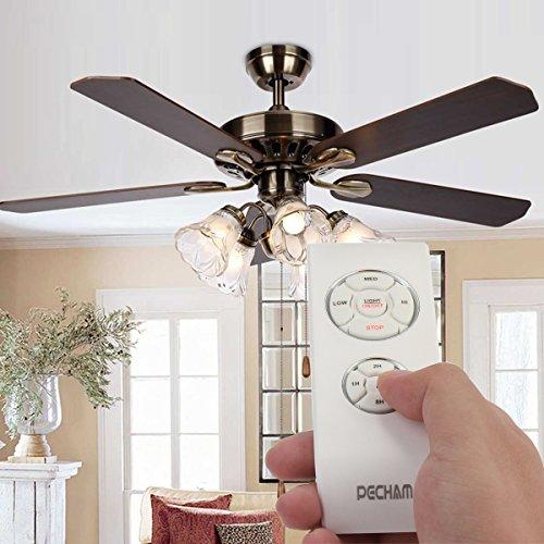 Hunter Ceiling Fan Light Turns On By Itself Shelly Lighting